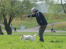 photo1153.jpg